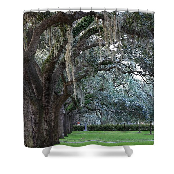 Emmet Park In Savannah Shower Curtain