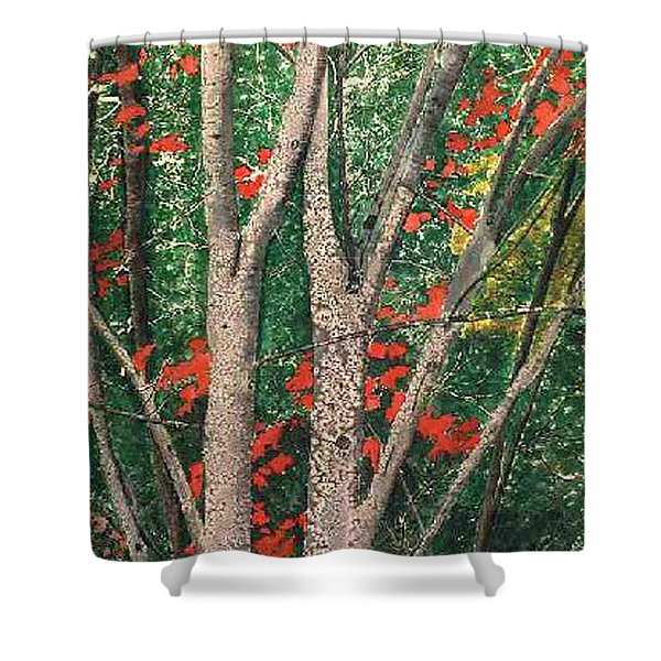 Enchanted Birches Shower Curtain