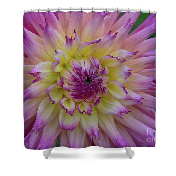 Enchantment Shower Curtain