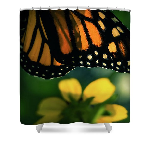 End Of Summer Monarch Shower Curtain