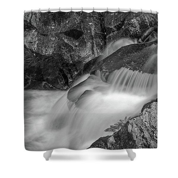 Enders Falls 2 Shower Curtain