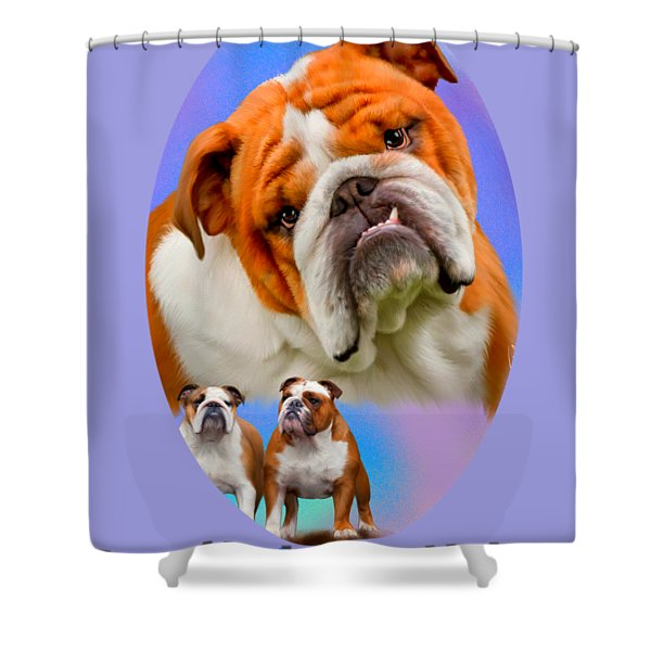 English Bulldog With Border Shower Curtain