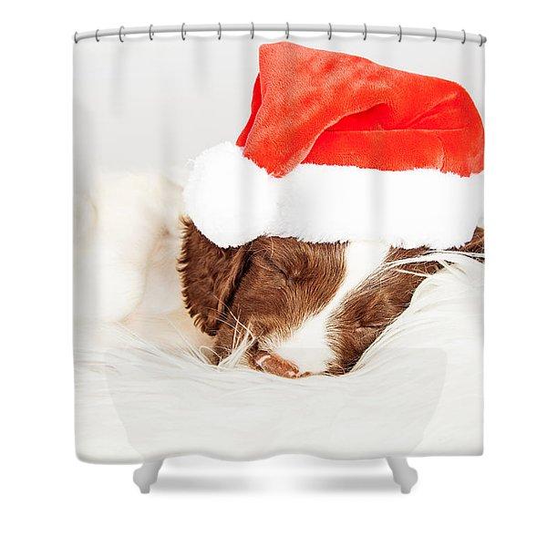 English Springer Spaniel Puppy Wearing Santa Hat While Sleeping Shower Curtain