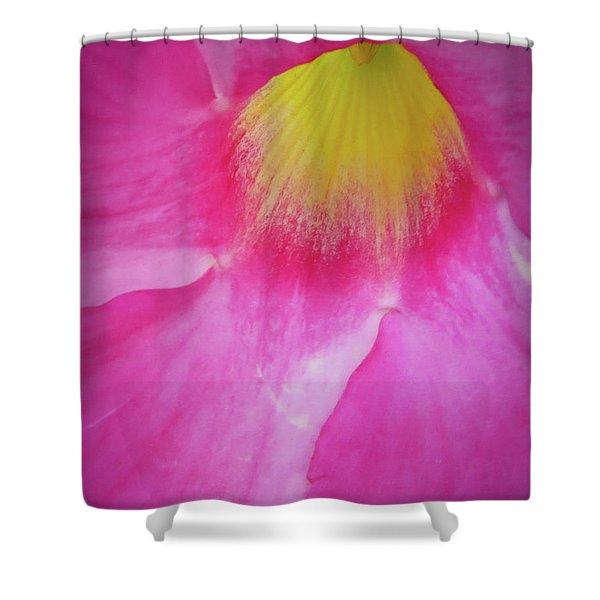 Entering Mandavilla Shower Curtain
