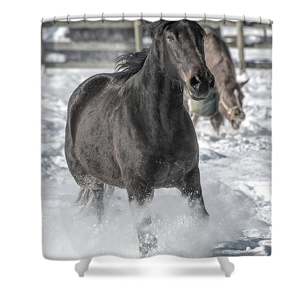 Equine Snowy Morning Shower Curtain