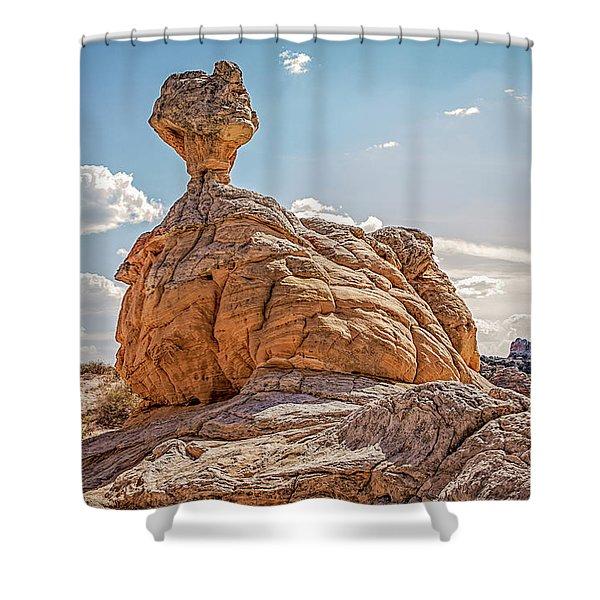 Et Rock Formation Shower Curtain