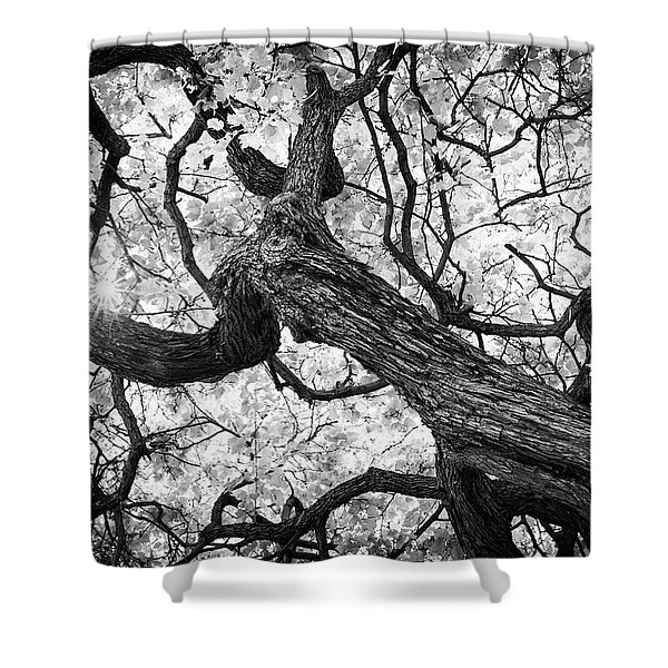 Ethereal Maple Shower Curtain