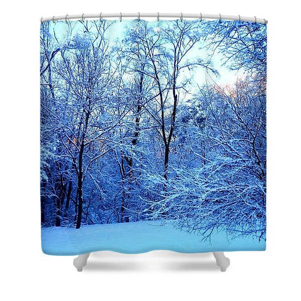 Ethereal Snow Shower Curtain