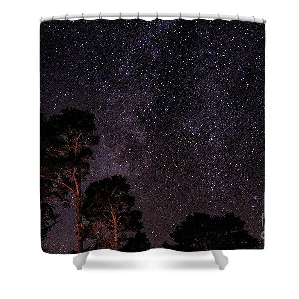 Eucalyptus Galaxy Shower Curtain