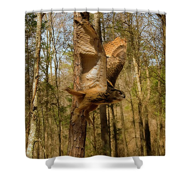 Eurasian Eagle Owl In Flight Shower Curtain