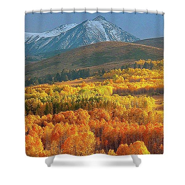 Evening Aspen Shower Curtain