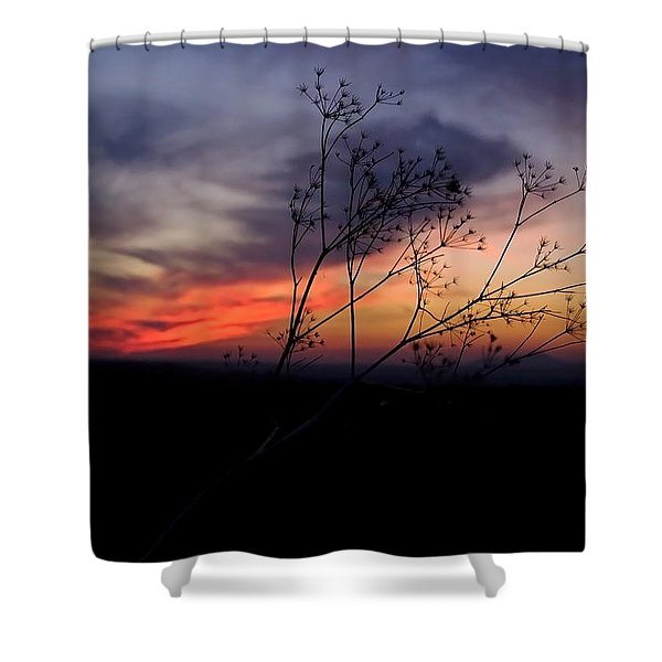 Evening Light Over Meadow Shower Curtain
