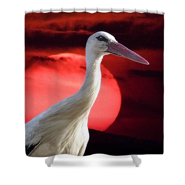 Evening Stork  Shower Curtain