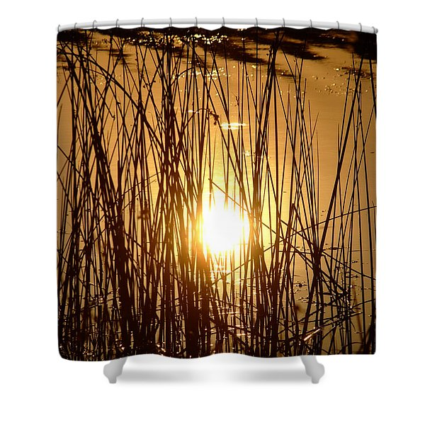 Evening Sunset Over Water Shower Curtain