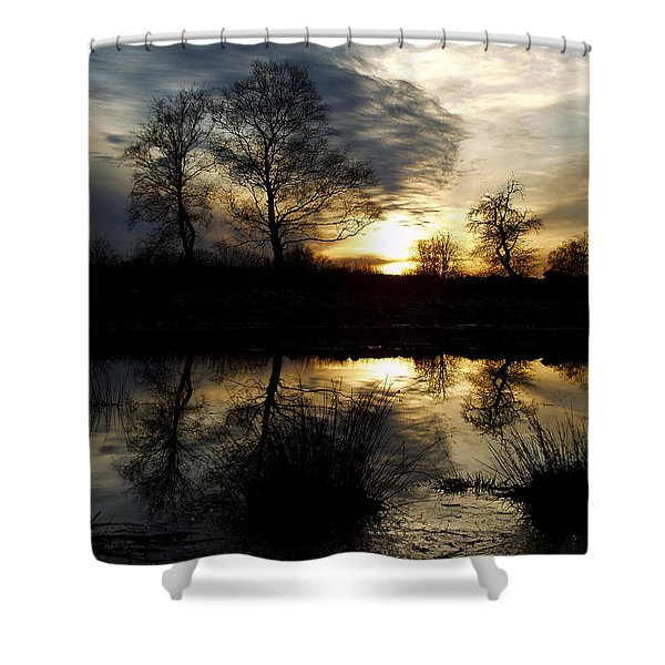 Everglade View Shower Curtain