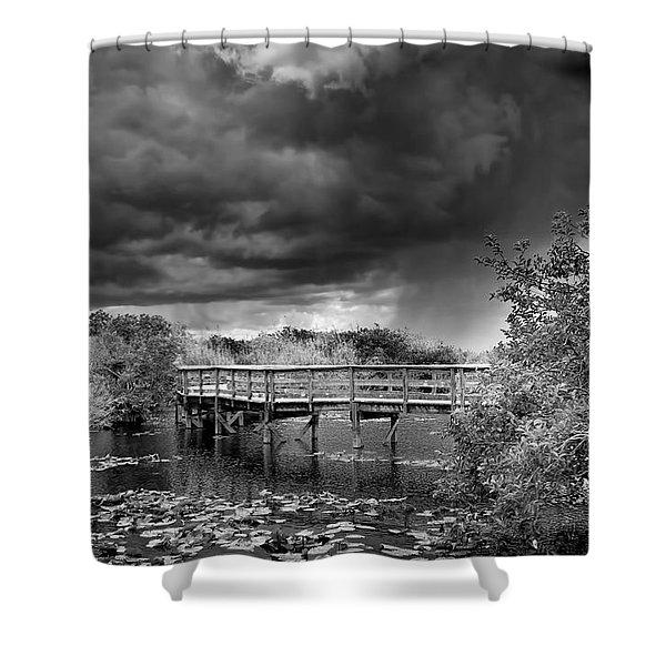 Everglades 0823bw Shower Curtain
