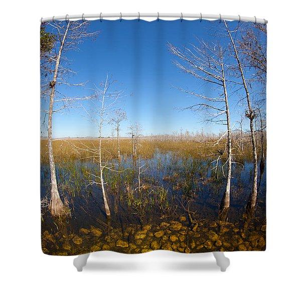 Everglades 85 Shower Curtain