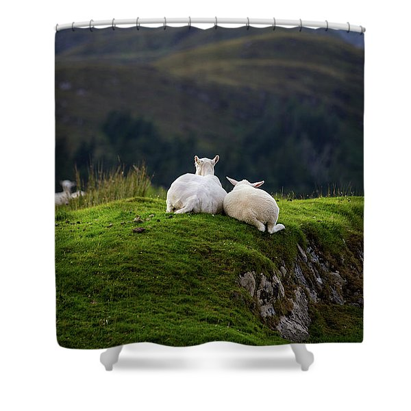 Ewe And Me Shower Curtain
