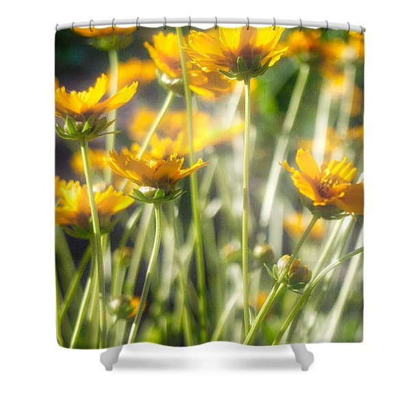 Explosion Of Yellow Shower Curtain