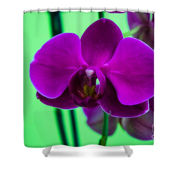 Exposed Orchid Shower Curtain