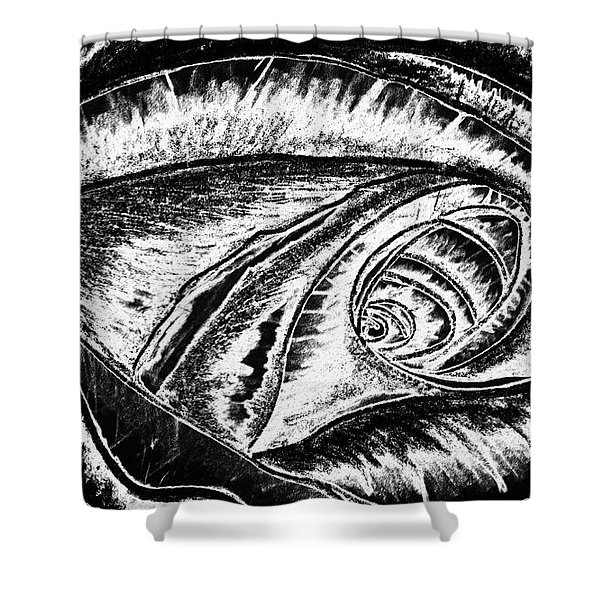 A0216a Expressive Abstract Black And White Shower Curtain