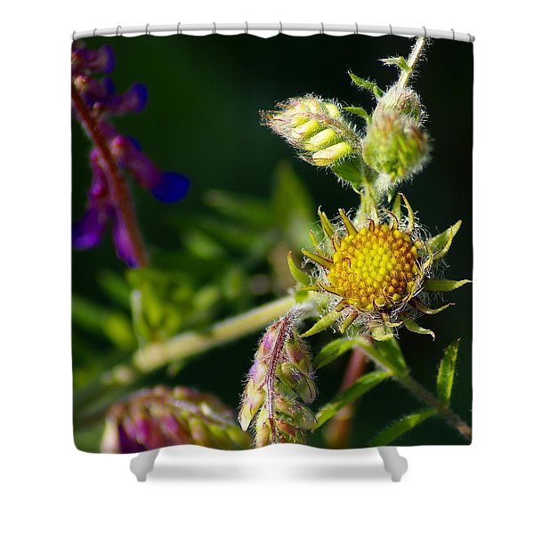 Eye Candy From The Garden Shower Curtain