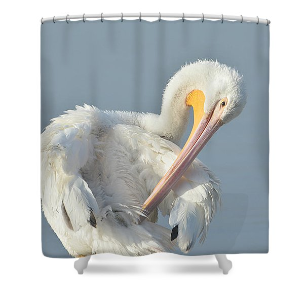 Eye On The Details Shower Curtain