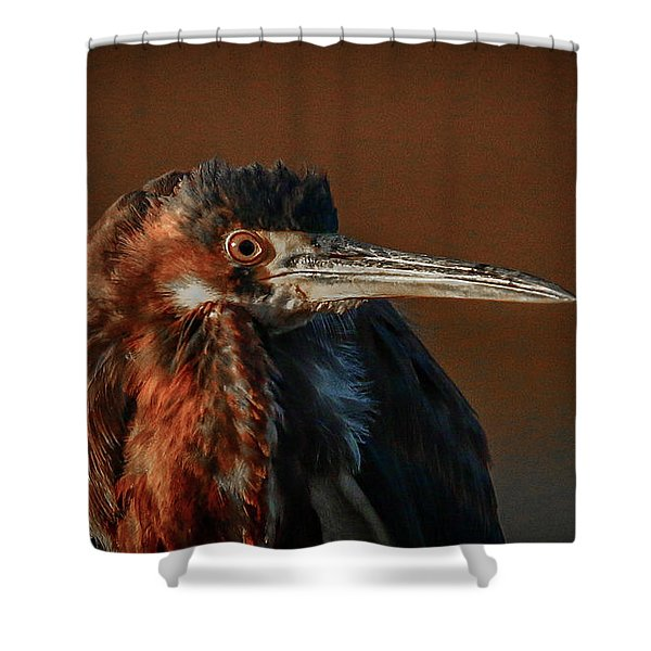 Shower Curtain featuring the photograph Eye To Eye With Heron by Tom Claud