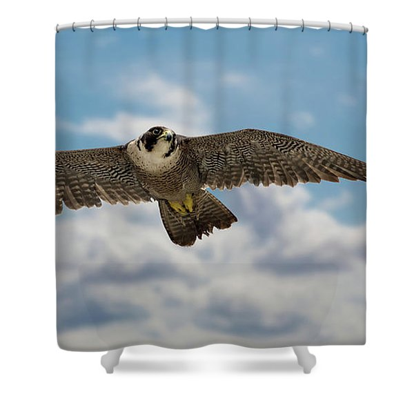 Eyes In The Sky Shower Curtain