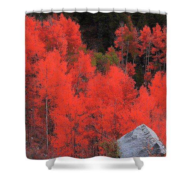 Faafallscene101 Shower Curtain