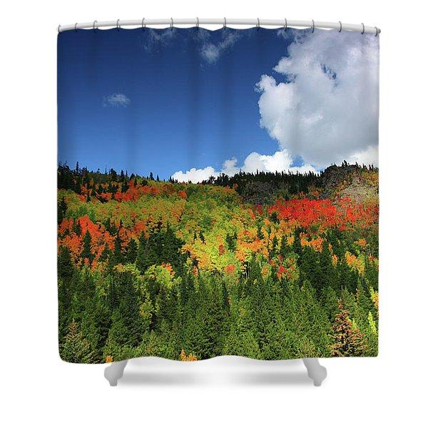 Faafallscene115 Shower Curtain