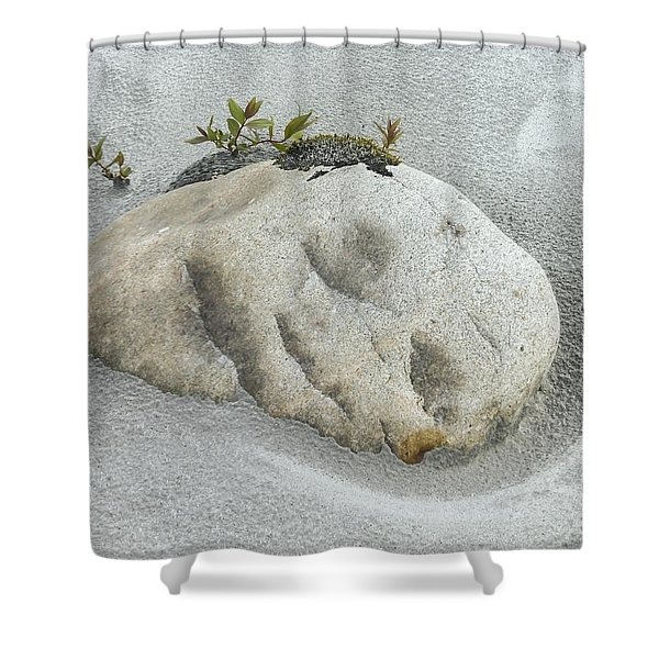 Face In The Sand At Baird Glacier Outwash Shower Curtain
