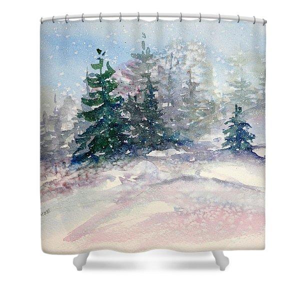 Fading Winter Light Shower Curtain
