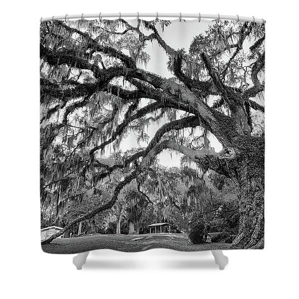 Fairchild Tree Shower Curtain