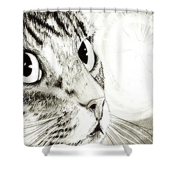 Fairy Light Tabby Cat Drawing Shower Curtain