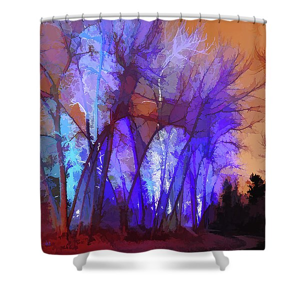 Fairy Tales Do Come True Shower Curtain