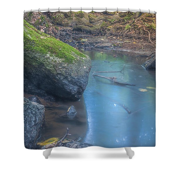 Fairyland Forest Pool Shower Curtain