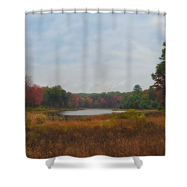 Fall Colors At Gladwin 4459 Shower Curtain