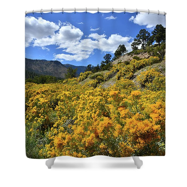 Fall Colors Come To Mt. Charleston Shower Curtain