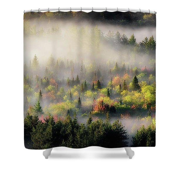 Fall Fog Shower Curtain