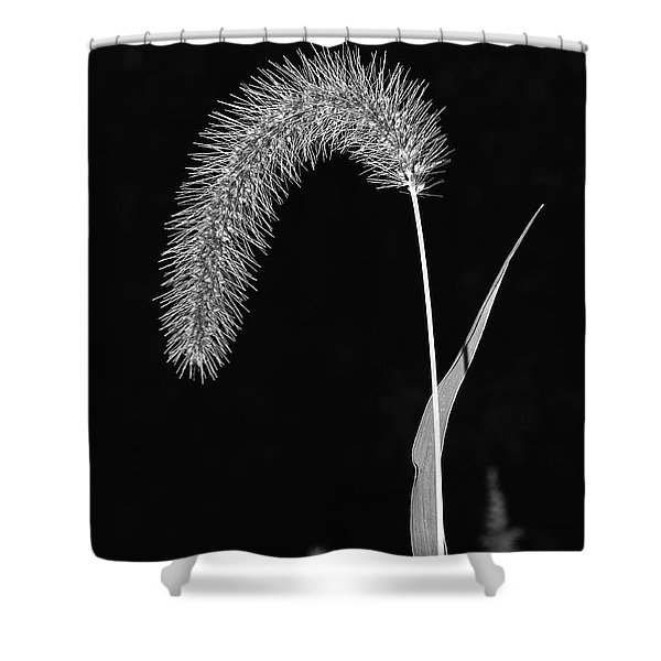 Fall Grass 1 Shower Curtain