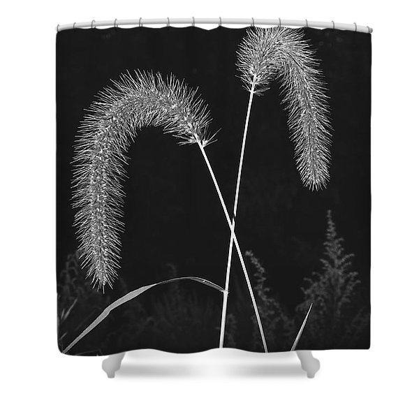 Fall Grass 2 Shower Curtain