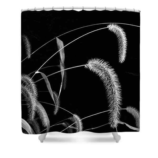 Fall Grass 3 Shower Curtain