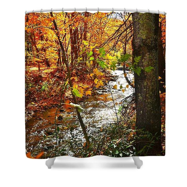 Fall In The Mountains Shower Curtain