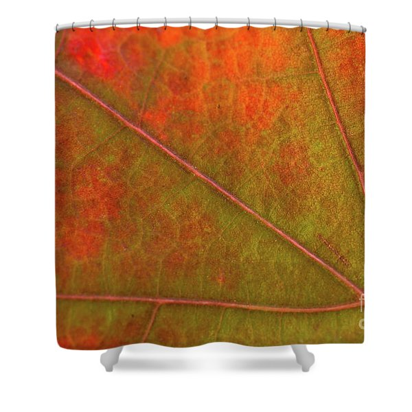 Fall Leaf Jewel Shower Curtain