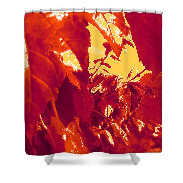 Fall Leaves #13 Shower Curtain