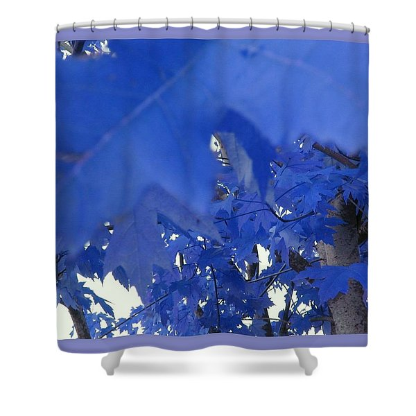 Fall Leaves #7 Shower Curtain