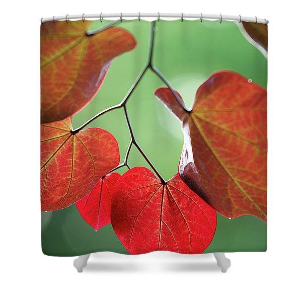 Redbud Shower Curtain