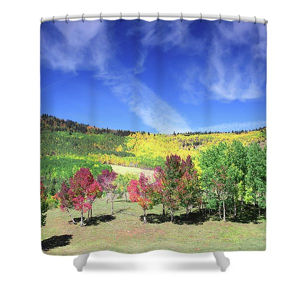 Fall On County Road 12 Shower Curtain