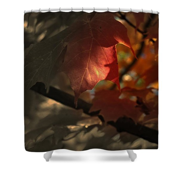 Fall Or Not Shower Curtain
